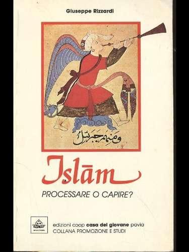 Islam - processare o capire?
